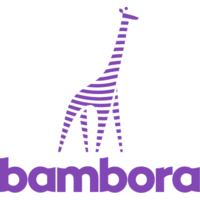 Bambora Logo.png