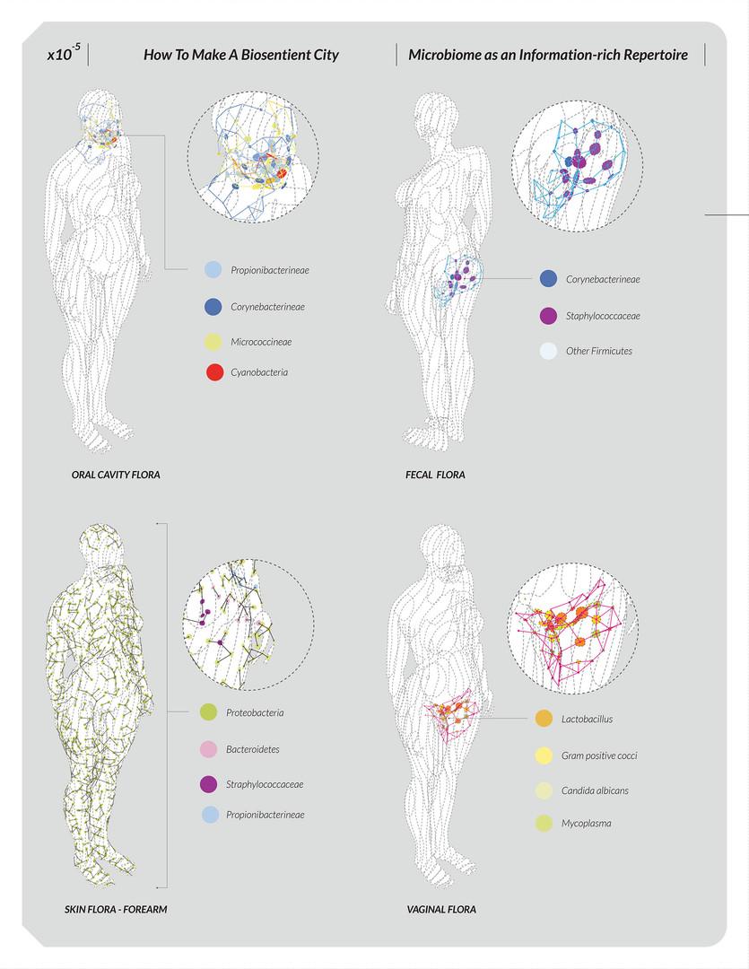 Microbial Fingerprint