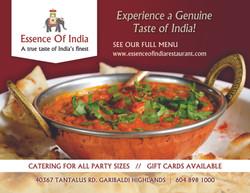 Essense Of India - Working File