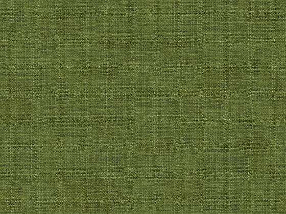 JUDD GREEN