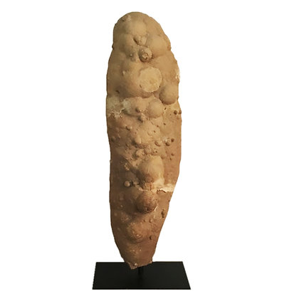Extremely Large Stand-Mounted Stone Fossil Sculpture