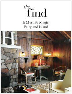 THEFIND_COVER