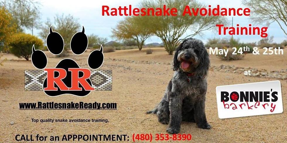 Rattlesnake Avoidance Training at Bonnie's Barkery