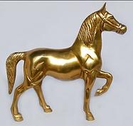 stallion.png