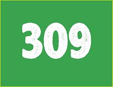 309g.jpg