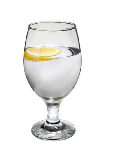 Delightful Water Glass 14oz [24/1]