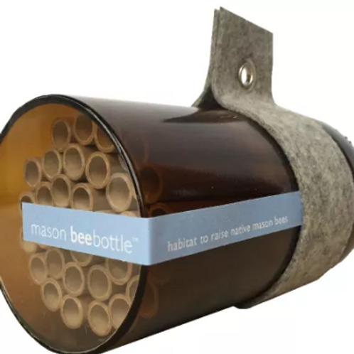 Bee Bottle - Mason