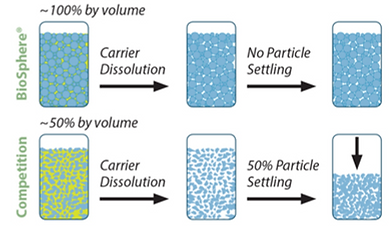Particle Settling