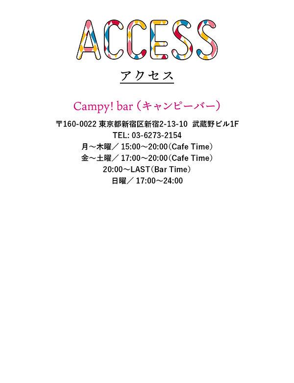 campy_bar_access.jpg