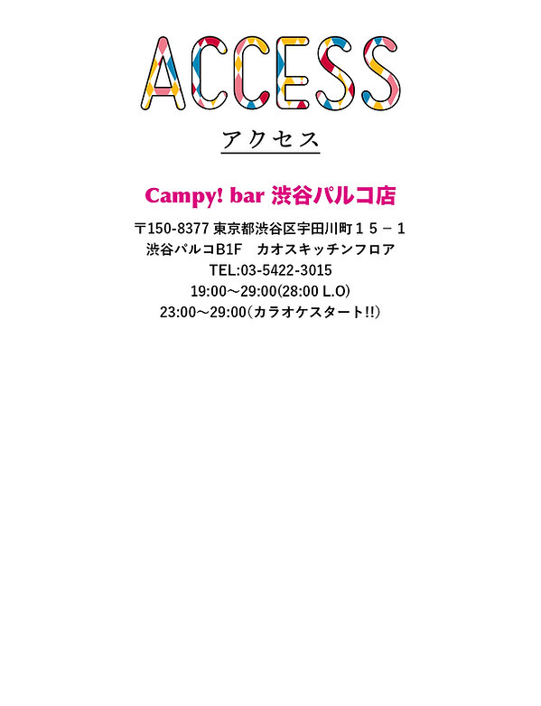 campy_bar_access_paruko.jpg