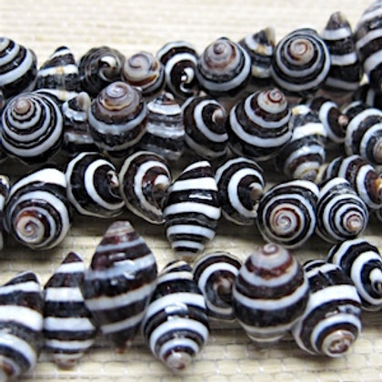 Pyrene Shell