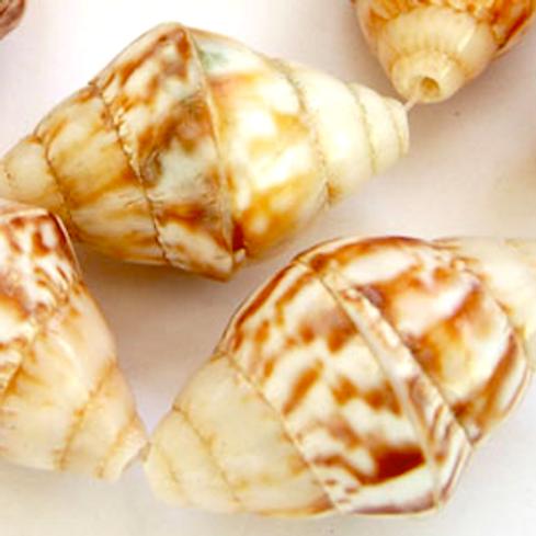 Akob Shell