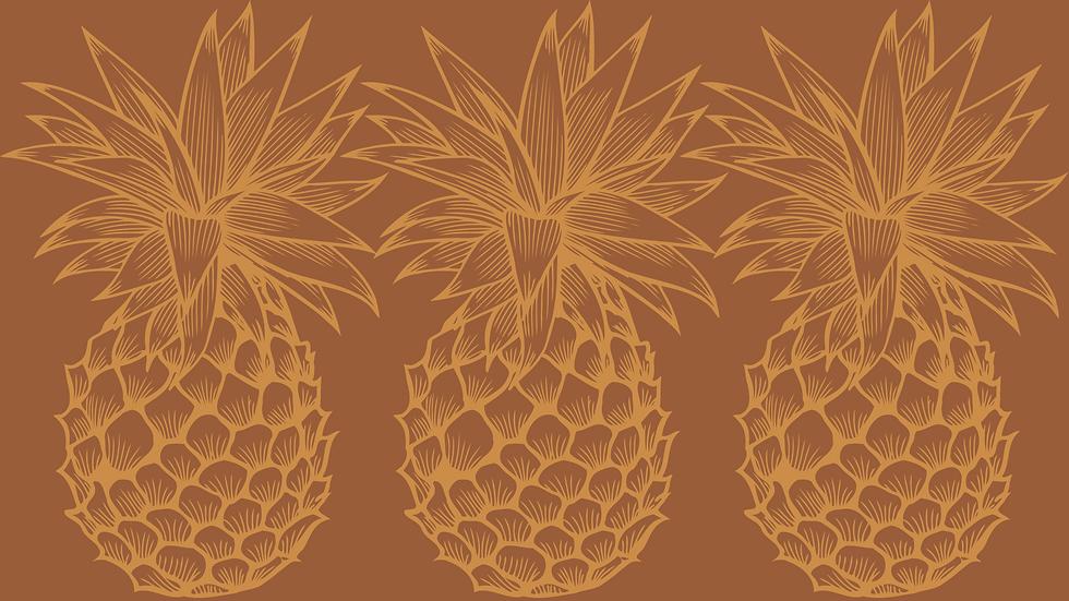 brown pineapple.png