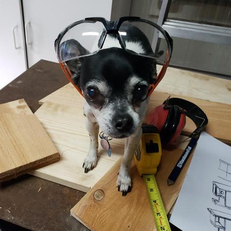 DIY - Squirrel House