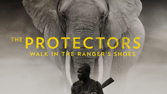The Protectors: A Walk in the Ranger's Shoes