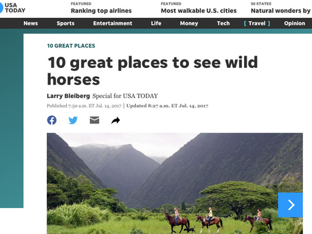 USA Today: Wild Horse Viewing