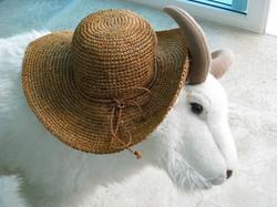 Billy's Favorite Hat