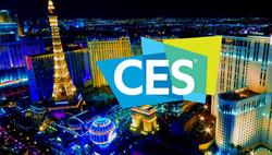 BeeLife in Las Vegas