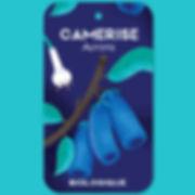 camerise.jpg