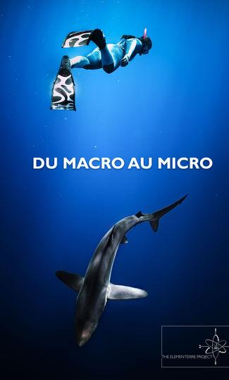 Du Macro au Micro