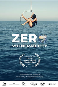 Zero Vulnerability Affiche.jpg