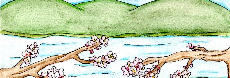 31 どこかで春が(33弁専用もあります) 草川 信