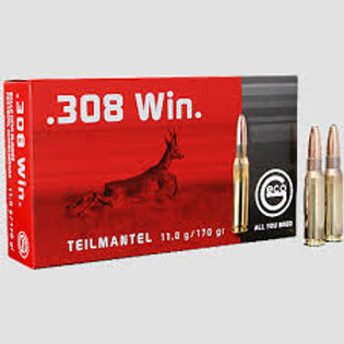 GECO .308 win TM 11,0g