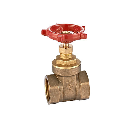 Gate valve GV-134-25