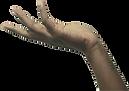 Bindimu's hand