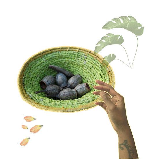 SWEET KIWI | woven bowl