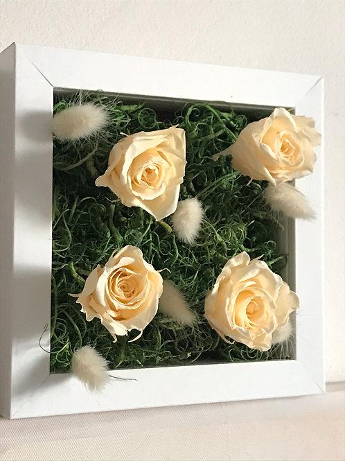 Mini cadre végétal roses