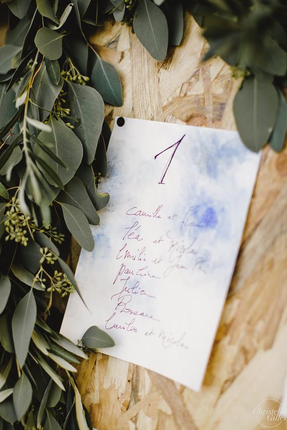 Guirlande eucalyptus populus plan de tab