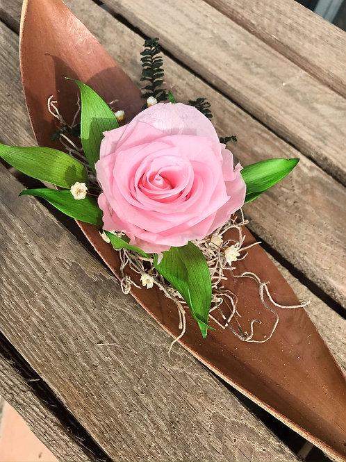 Rose éternelle sur sa pirogue