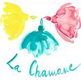 LOGO CHAMANE.png