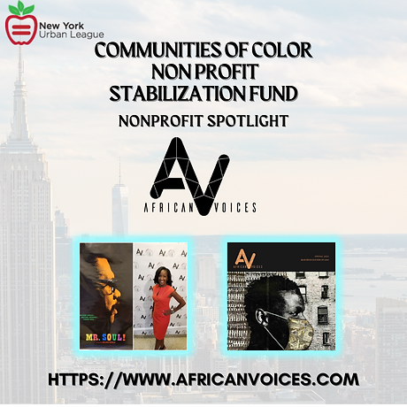 African Voices Communications, Inc..png