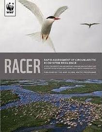 RACER cover.jpg