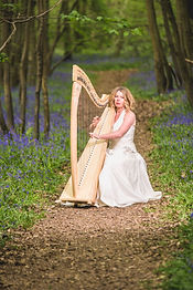 Harp relaxation.jpg