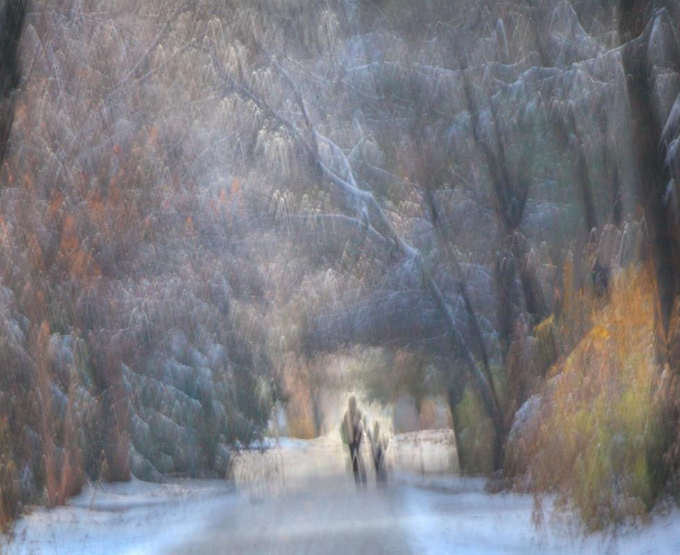 Walking Home from Sledding