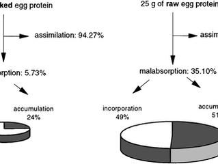 Aquecimento de whey e 'destruição' da proteína?