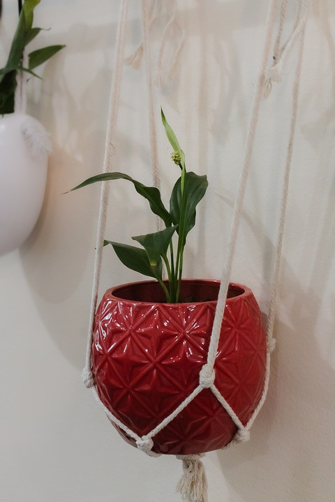 macramé plant holder