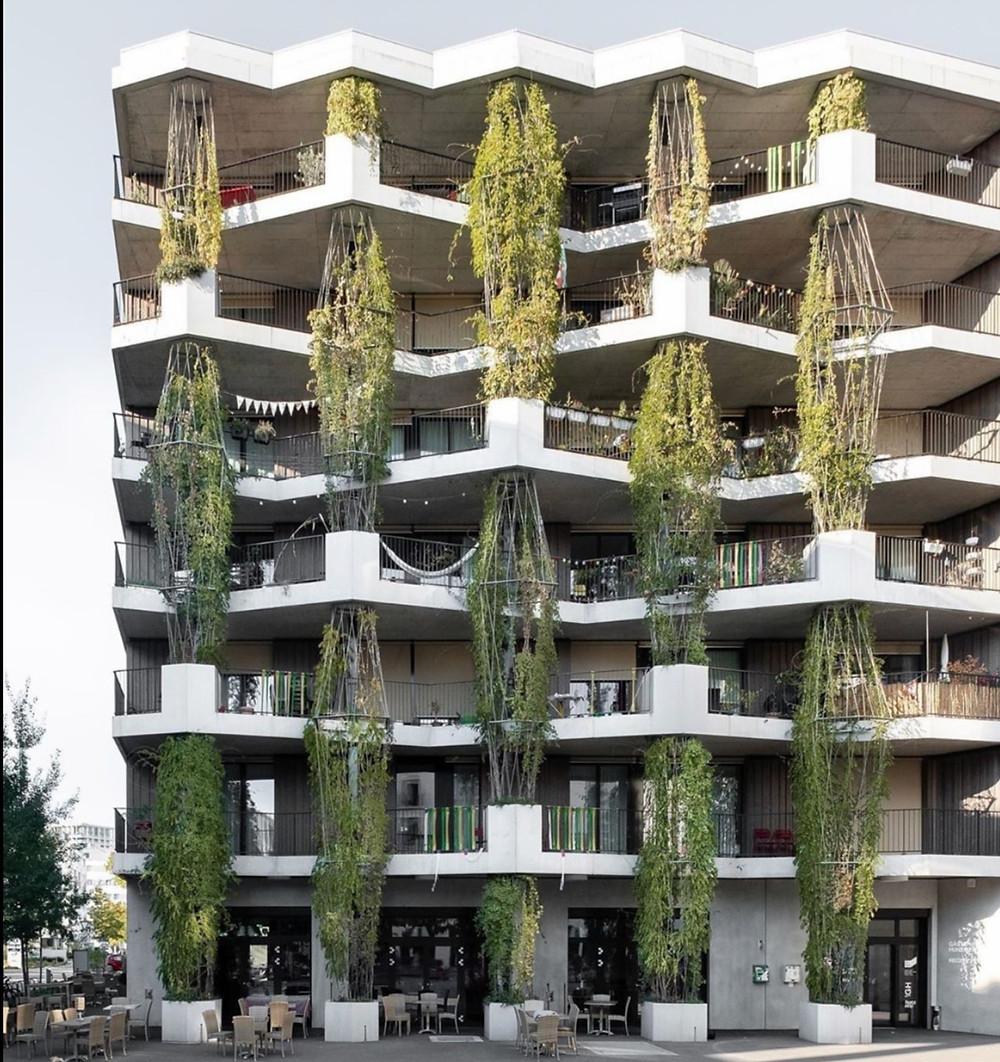plant design architecture