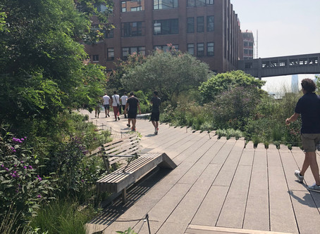 NYC's High Line: An Inspirational Transformation