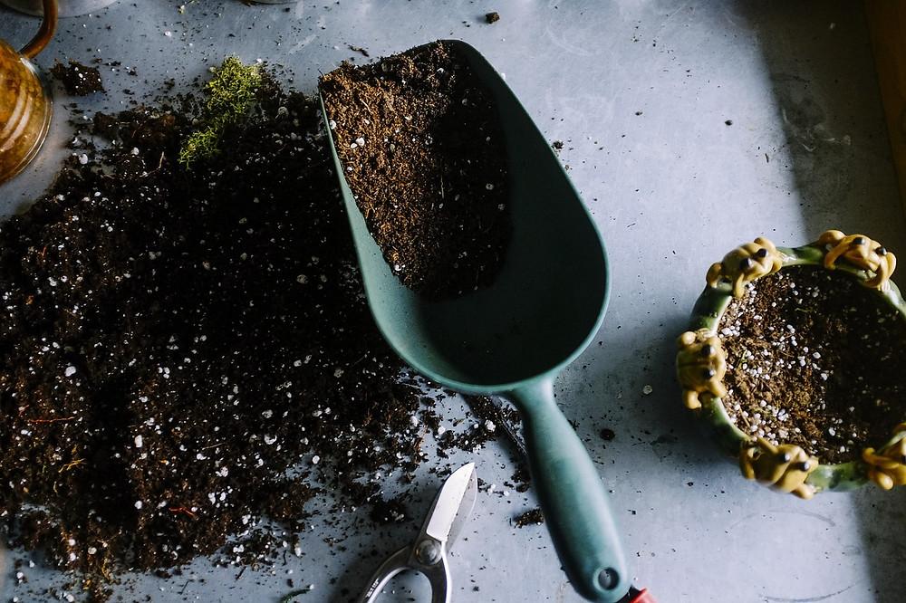 Scoop of soil