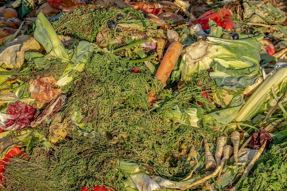 composting vegetables