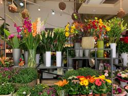 Fellner Blumen Donauzentrum
