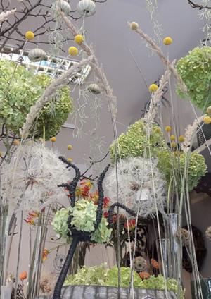 Fellner Blumen Impressionen 8