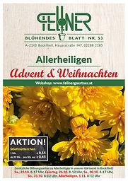 Fellner Blumen Blühendes Blatt 53.jpg