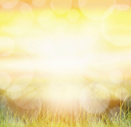 Sunny-natur-background-with-bokeh-and-su