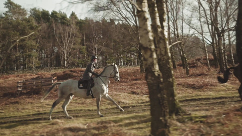 Noble Equestrian - AW19/20