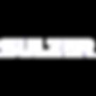logo-sulzer.png
